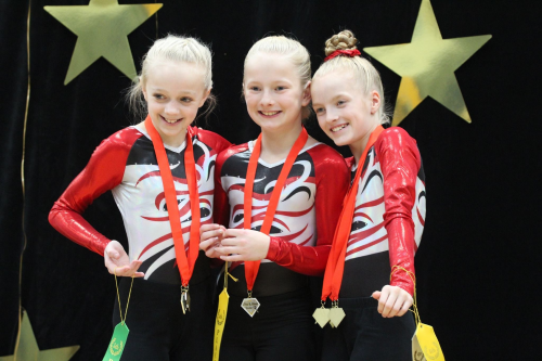 Aerials Team with gold medals